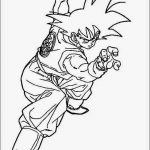 Imagen de Goku en posicipon de pelea p